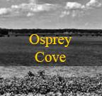 osprey-cove