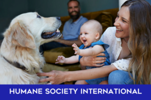 Humane Society International Give Back team