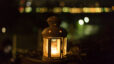 Yew Dell Botanical Garden Lantern Hike