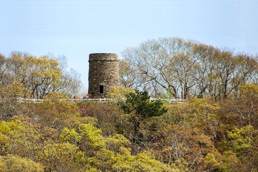 Dennis Scargo Tower
