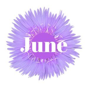 Cape-Cod-Spring-Events-June