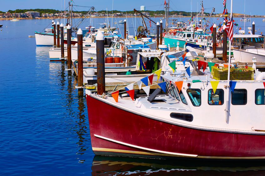 cape-cod-charities-and-nonprofits-Fishermans-Alliance