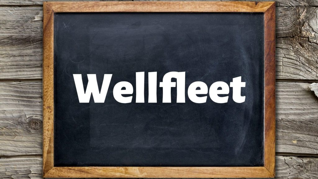 Cape-Cod-Nightlife-Wellfleet