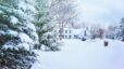 Tips for Improving Your Home's Curb Appeal During the Winter