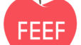 Are You Familiar with FEEF?📚📝
