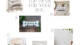 Best Etsy Finds for your Dog