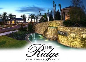 the-ridge-wiregrass-new-tampa-florida