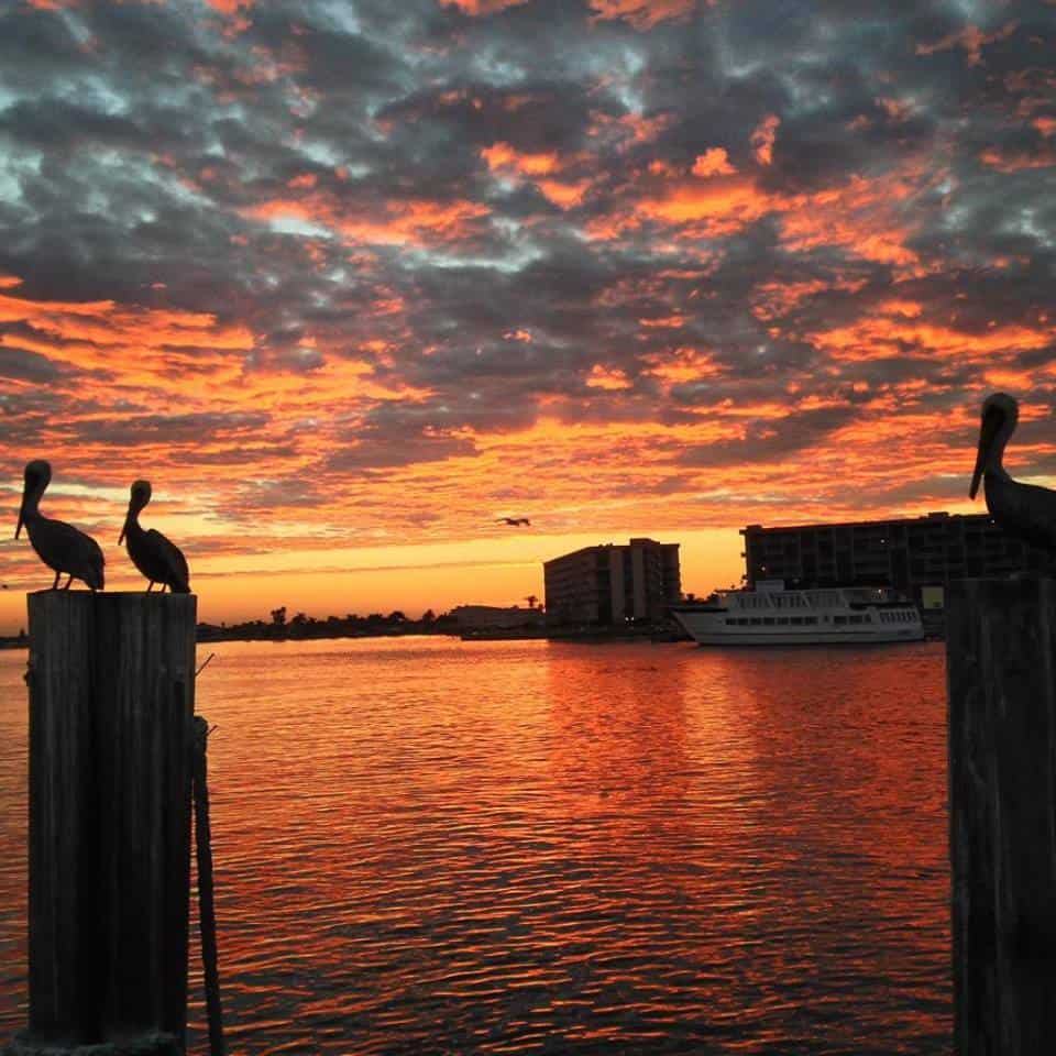 Tampa Bay Sunsets