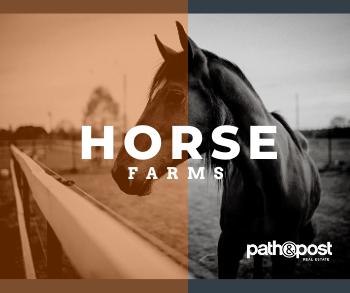 North Atlanta Horse Farms