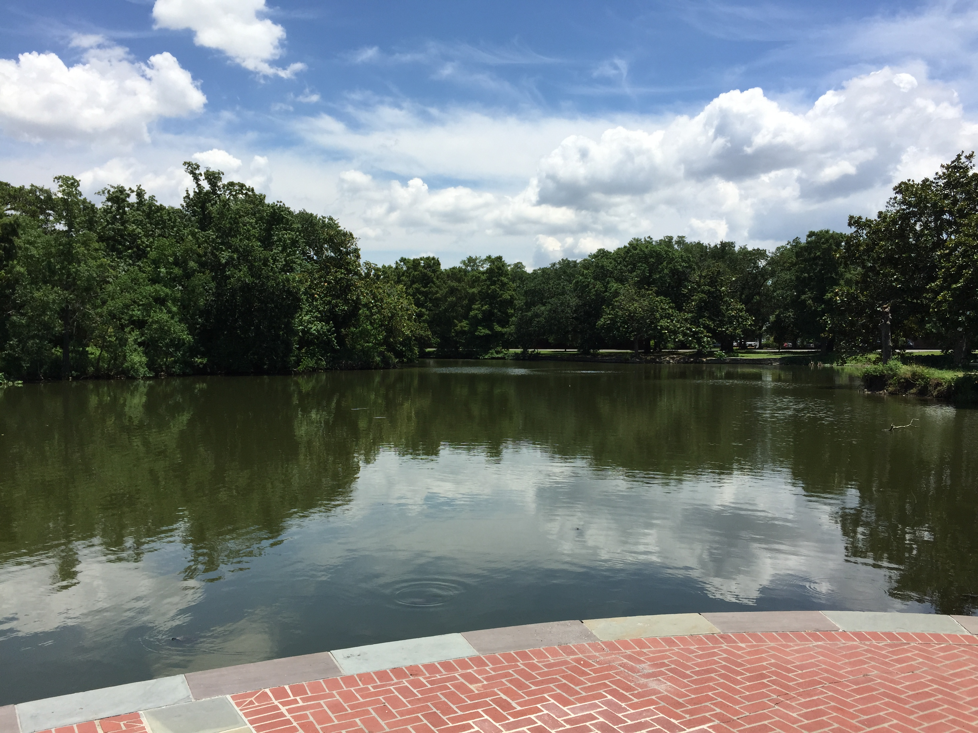 Loving Lagoon in Audubon Park, New Orleans LA