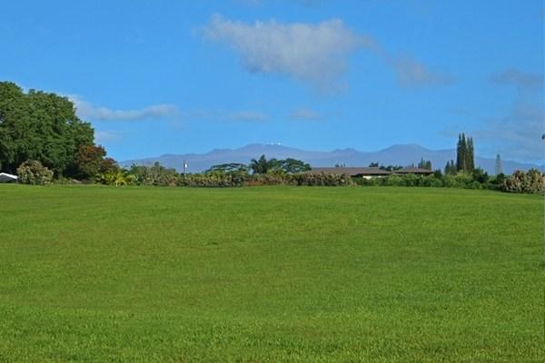 big-island-land
