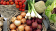 Easiest Veggies To Grow In Lafayette Aimee Ness (1)