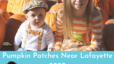 Pumpkin Patches Near Lafayette 2020 Aimee Ness Realty Group