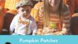 Pumpkin patches near Lafayette IN