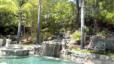 Beautiful Oasis in San Ramon, CA