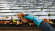 Fall Maintenance Tips