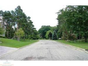 Overglen street