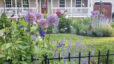 Landscaping Trends To Increase The Value Of Your Home